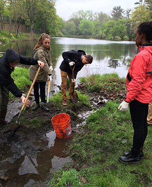 Four students working in a swampy lake.